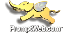 Promptweb for all your web development needs.